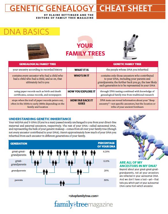 What Is Genetic Genealogy