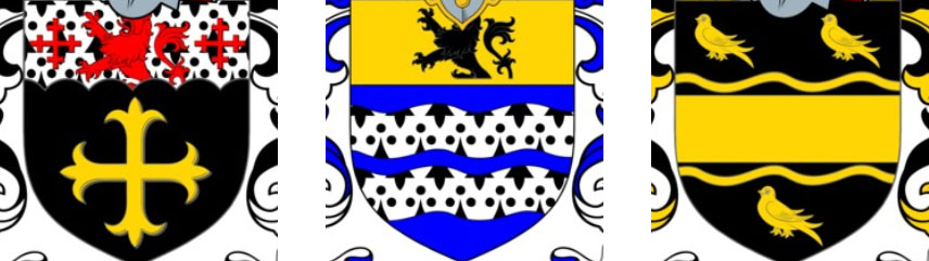 Arms of Coat of Arms