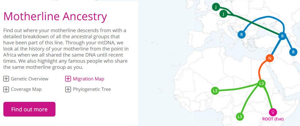 Living DNA Motherline Ancestry