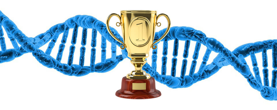 Best DNA Test For Ancestry