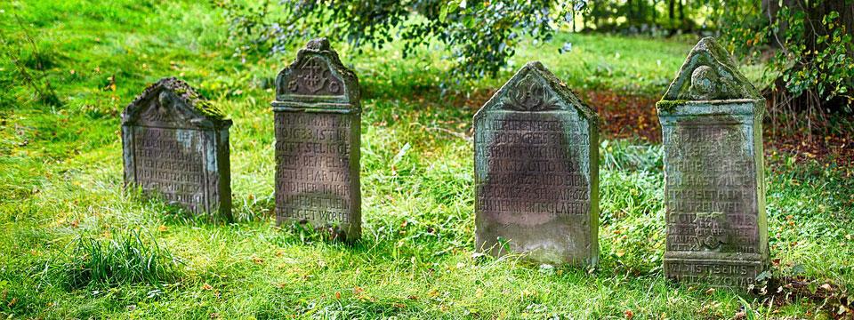 Find Cemetery Grave - Memorial Information