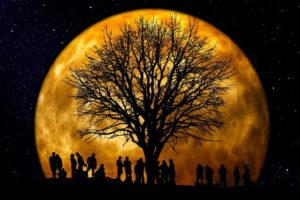 Importance of Ancestral Roots